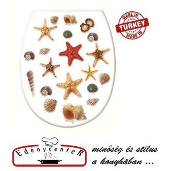 Kagyló, Tengeri csillag mintás wc tető (Kagyló-372)